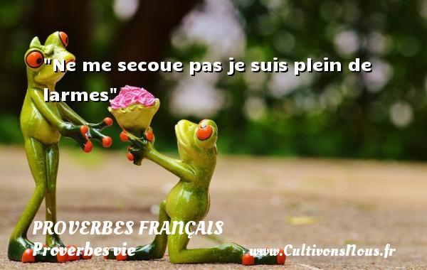 Ne me secoue pas je suis plein de larmes   Un proverbe sur la vie PROVERBES FRANÇAIS - Proverbes français - Proverbes vie
