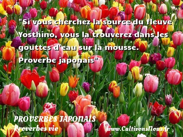 Proverbes japonais - Proverbes vie - Si vous cherchez la source du fleuve Yosthino, vous la trouverez dans les gouttes d eau sur la mousse.   Proverbe japonais   Un proverbe sur la vie PROVERBES JAPONAIS