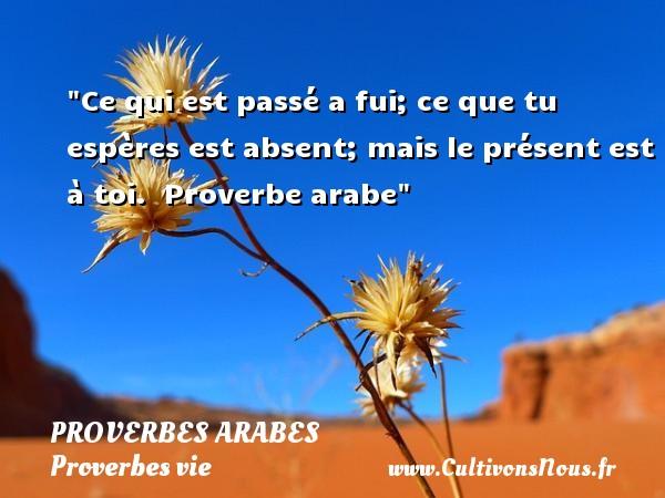 Ce qui est passé a fui; ce que tu espères est absent; mais le présent est à toi.   Proverbe arabe   Un proverbe sur la vie PROVERBES ARABES - Proverbes vie