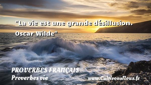 La vie est une grandedésillusion. Oscar Wilde  Un proverbe sur la vie PROVERBES FRANÇAIS - Proverbes français - Proverbes vie