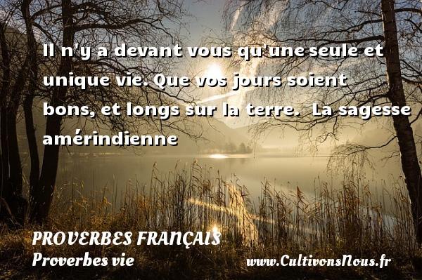Proverbes français - Proverbes vie - Il n y a devant vous qu uneseule et unique vie.Que vos jours soient bons,et longs sur la terre.   La sagesse amérindienne   Un proverbe sur la vie PROVERBES FRANÇAIS