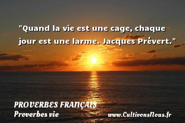 Proverbes français - Proverbes vie - Quand la vie est une cage,chaque jour est une larme.  Jacques Prévert.  Un proverbe sur la vie PROVERBES FRANÇAIS