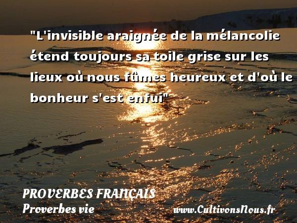 Proverbes français - Proverbes vie - L invisible araignée de lamélancolie étend toujours satoile grise sur les lieux oùnous fûmes heureux et d oùle bonheur s est enfui  Un proverbe sur la vie PROVERBES FRANÇAIS