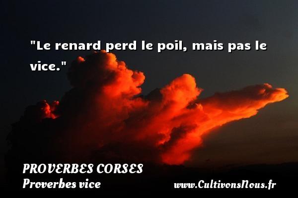 Proverbes corses - Proverbes vice - Le renard perd le poil, mais pas le vice.   Un proverbe corse PROVERBES CORSES
