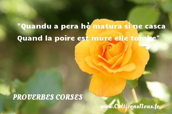 Proverbes corses - Quandu a pera hè matura si ne casca Quand la poire est mure elle tombe   Un proverbe corse PROVERBES CORSES