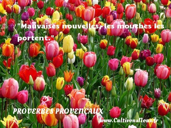 Mauvaises nouvelles, les mouches les portent.   Un proverbe provençal PROVERBES PROVENÇAUX - Proverbes provençaux
