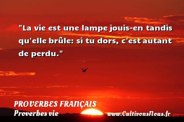 Proverbes français - Proverbes vie - La vie est une lampejouis-en tandis qu ellebrûle: si tu dors, c estautant de perdu.  Un proverbe sur la vie PROVERBES FRANÇAIS