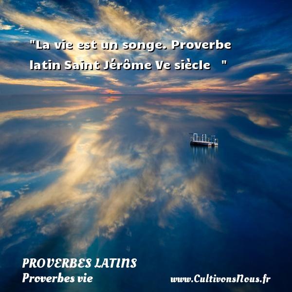 Proverbes latins - Proverbes vie - La vie est un songe.  Proverbe latinSaint Jérôme  Ve siècle     PROVERBES LATINS