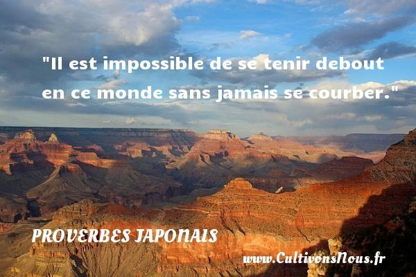 Il est impossible de se tenir debout en ce monde sans jamais se courber.   Un proverbe japonais PROVERBES JAPONAIS