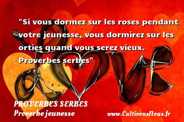 Proverbes serbes - Proverbe jeunesse - Si vous dormez sur les roses pendant votre jeunesse, vous dormirez sur les orties quand vous serez vieux.   Proverbes serbes   Un proverbe sur la jeunesse PROVERBES SERBES