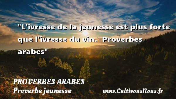 Proverbes arabes - Proverbe jeunesse - L ivresse de la jeunesse est plus forte que l ivresse du vin.   Proverbes arabes   Un proverbe sur la jeunesse PROVERBES ARABES