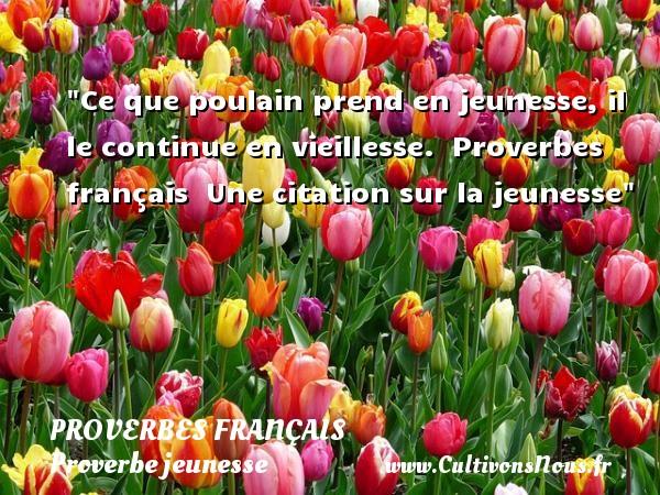 Proverbes français - Proverbe jeunesse - Ce que poulain prend en jeunesse, il le continue en vieillesse.   Proverbes français   Une citation sur la jeunesse PROVERBES FRANÇAIS