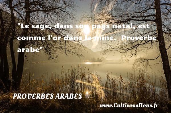 Proverbes arabes - Proverbes Naissance - Le sage, dans son pays natal, est comme l or dans la mine.   Proverbe arabe   Un proverbe sur la naissance PROVERBES ARABES