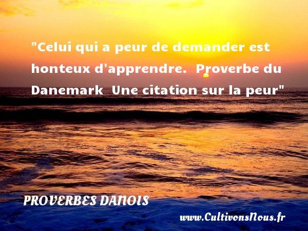 Celui qui a peur de demander est honteux d apprendre.   Proverbe du Danemark   Une citation sur la peur PROVERBES DANOIS - Citation peur