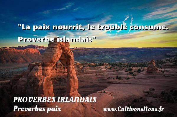 La paix nourrit, le trouble consume.   Proverbe islandais   Un proverbe sur la Paix PROVERBES IRLANDAIS - Proverbes paix