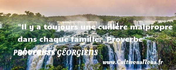 Il y a toujours une cuillère malpropre dans chaque famille.   Proverbe géorgien   Un proverbe famille PROVERBES GÉORGIENS - Proverbes géorgiens - Proverbes famille