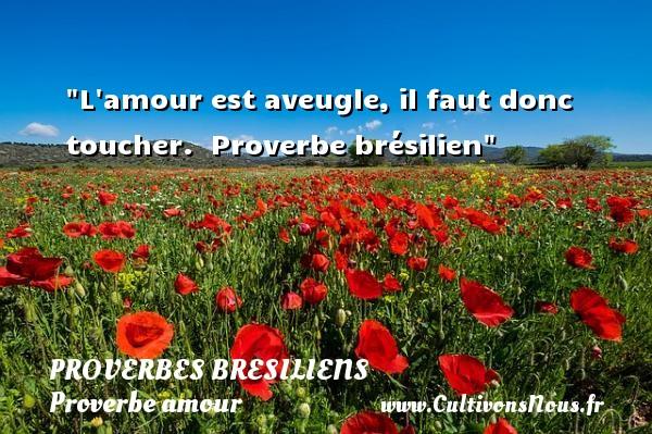 L amour est aveugle, il faut donc toucher.   Proverbe brésilien   Un proverbe sur l amour PROVERBES BRESILIENS - Proverbe amour