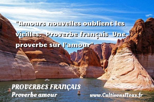 Proverbes français - Proverbe amour - Amours nouvelles oublient les vieilles.   Proverbe français   Une proverbe sur l amour PROVERBES FRANÇAIS