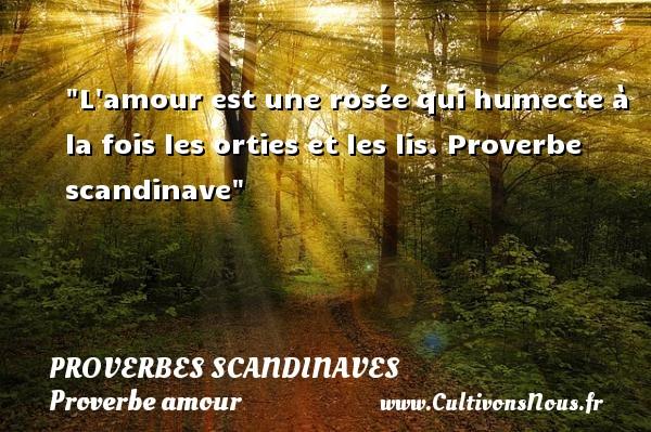 Proverbes scandinaves - Proverbe amour - L amour est une rosée qui humecte à la fois les orties et les lis.  Proverbe scandinave  Un proverbe sur l amour PROVERBES SCANDINAVES