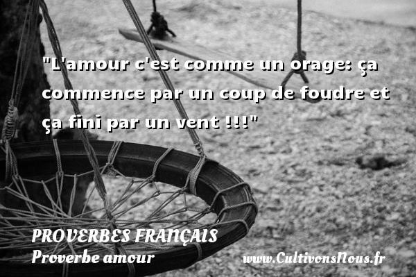 L amour c est comme un orage: ça commence par un coup de foudre et ça fini par un vent !!!  Un proverbe sur l amour PROVERBES FRANÇAIS - Proverbes français - Proverbe amour