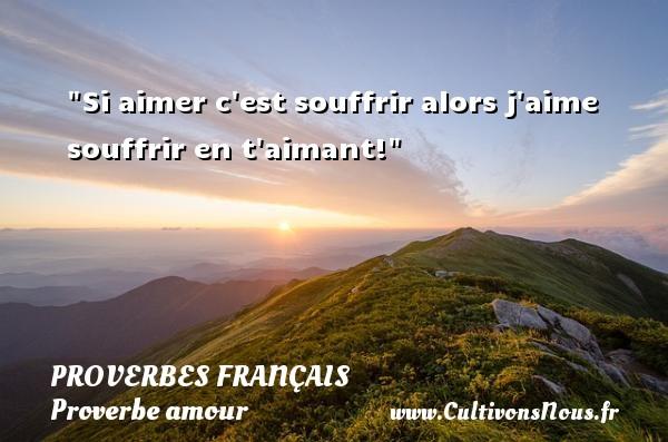 Si aimer c est souffrir alors j aime souffrir en t aimant!  Un proverbe sur l amour PROVERBES FRANÇAIS - Proverbes français - Proverbe amour