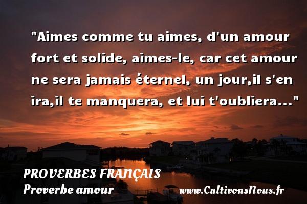 Aimes comme tu aimes, d un amour fort et solide, aimes-le, car cet amour ne sera jamais éternel, un jour,il s en ira,il te manquera, et lui t oubliera...  Un proverbe sur l amour PROVERBES FRANÇAIS - Proverbes français - Proverbe amour