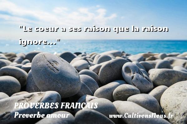 Le coeur a ses raison que la raison ignore...  Un proverbe sur l amour PROVERBES FRANÇAIS - Proverbes français - Proverbe amour