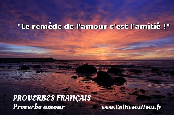 Le remède de l amour c est l amitié !  Un proverbe sur l amour PROVERBES FRANÇAIS - Proverbes français - Proverbe amour