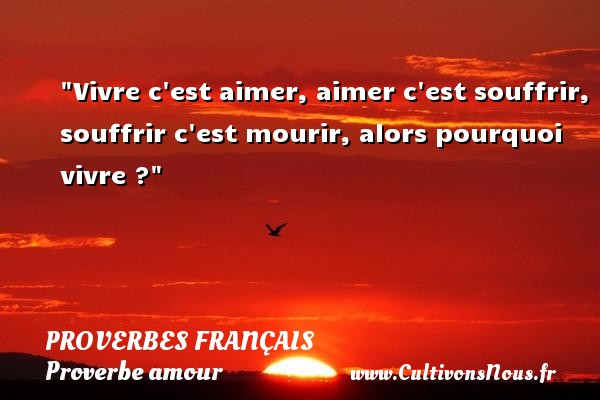 Vivre c est aimer, aimer c est souffrir, souffrir c est mourir, alors pourquoi vivre ?  Un proverbe sur l amour PROVERBES FRANÇAIS - Proverbes français - Proverbe amour