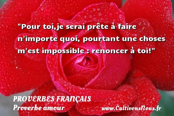 Pour toi,je serai prête à faire n importe quoi, pourtant une choses m est impossible : renoncer à toi!  Un proverbe sur l amour PROVERBES FRANÇAIS - Proverbes français - Proverbe amour