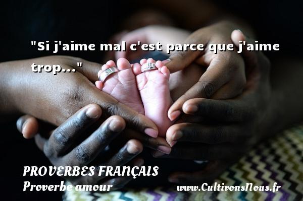 Si j aime mal c est parce que j aime trop...  Un proverbe sur l amour PROVERBES FRANÇAIS - Proverbes français - Proverbe amour