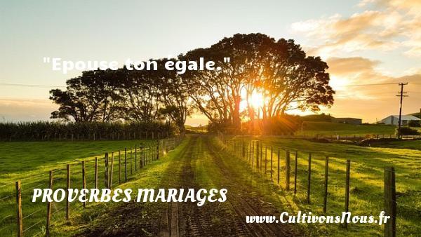 Proverbes grecs - Proverbes mariage - Epouse ton égale.   Un proverbe grec   Un proverbe sur le mariage PROVERBES GRECS
