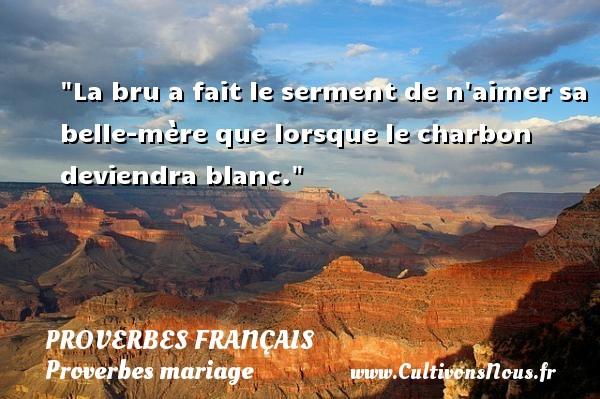 Proverbes français - Proverbes mariage - La bru a fait le serment de n aimer sa belle-mère que lorsque le charbon deviendra blanc.   Un proverbe sur le mariage PROVERBES FRANÇAIS