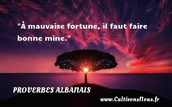 À mauvaise fortune, il faut faire bonne mine.  Un Proverbe Albanie PROVERBES ALBANAIS