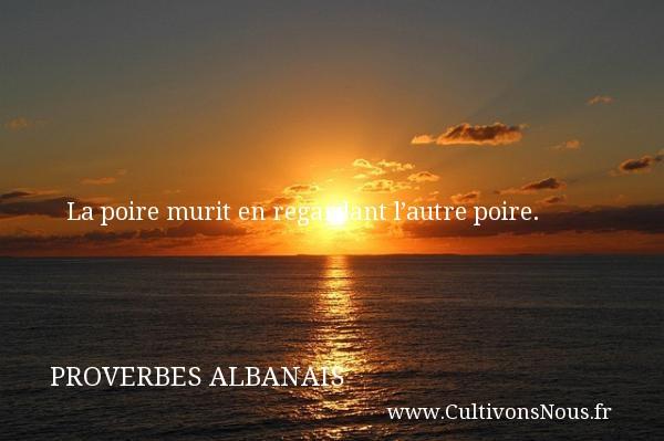 Proverbes Albanais - Proverbe regard - La poire murit en regardant l'autre poire.  Un Proverbe Albanie PROVERBES ALBANAIS