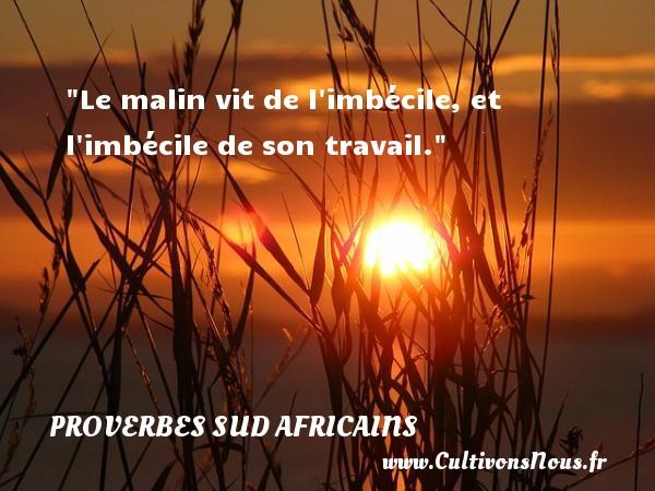 Le malin vit de l imbécile, et l imbécile de son travail.  Un Proverbe Sud africain PROVERBES SUD AFRICAINS - Proverbes philosophiques