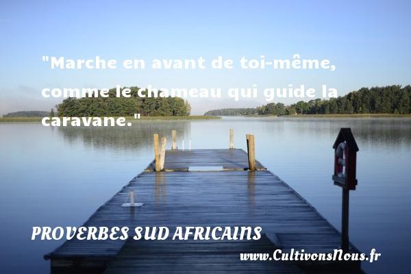 Marche en avant de toi-même, comme le chameau qui guide la caravane. Un Proverbe Sud africain PROVERBES SUD AFRICAINS