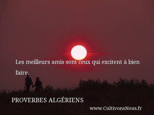 Les meilleurs amis sont ceux qui excitent à bien faire. Un Proverbe Algérien PROVERBES ALGÉRIENS - Proverbes Algériens - Proverbes fun