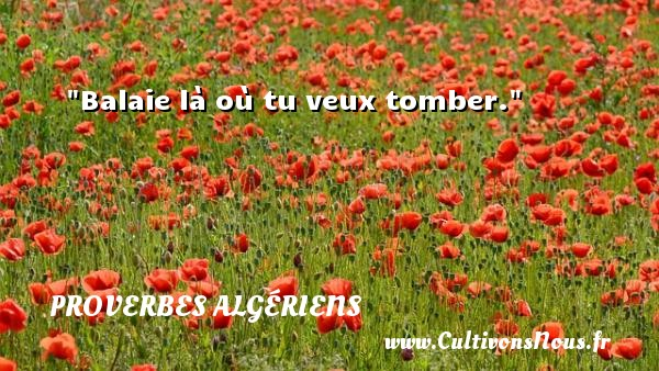 Proverbes Algériens - Proverbes philosophiques - Balaie là où tu veux tomber. Un Proverbe Algérien PROVERBES ALGÉRIENS