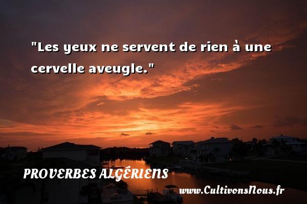 Les yeux ne servent de rien à une cervelle aveugle. Un Proverbe Algérien PROVERBES ALGÉRIENS - Proverbes Algériens - Proverbes philosophiques
