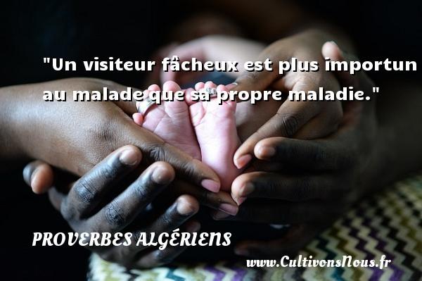 Un visiteur fâcheux est plus importun au malade que sa propre maladie. Un Proverbe Algérien PROVERBES ALGÉRIENS - Proverbes Algériens - Proverbes philosophiques