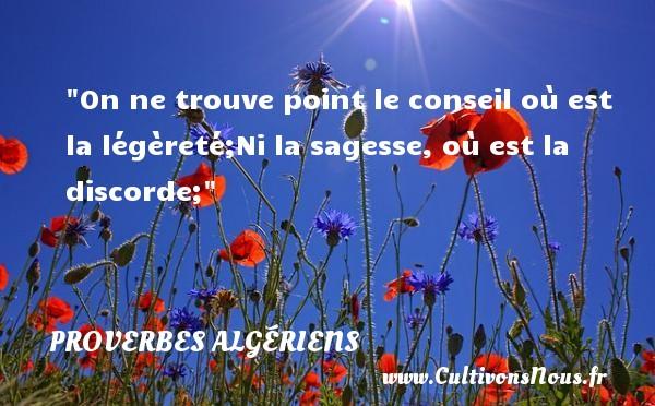 Proverbes Algériens - Proverbes philosophiques - On ne trouve point le conseil où est la légèreté;Ni la sagesse, où est la discorde; Un Proverbe Algérien PROVERBES ALGÉRIENS
