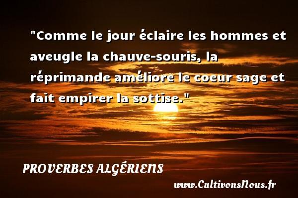 Proverbes Algériens - Proverbes philosophiques - Comme le jour éclaire les hommes et aveugle la chauve-souris, la réprimande améliore le coeur sage et fait empirer la sottise. Un Proverbe Algérien PROVERBES ALGÉRIENS