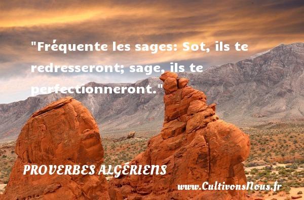 Fréquente les sages: Sot, ils te redresseront; sage, ils te perfectionneront. Un Proverbe Algérien PROVERBES ALGÉRIENS - Proverbes Algériens - Proverbes philosophiques