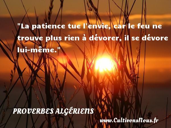 Proverbes Algériens - Proverbes patience - Proverbes philosophiques - La patience tue l envie, car le feu ne trouve plus rien à dévorer, il se dévore lui-même. Un Proverbe Algérien PROVERBES ALGÉRIENS