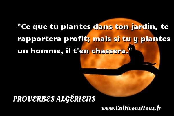 Ce que tu plantes dans ton jardin, te rapportera profit; mais si tu y plantes un homme, il t en chassera. Un Proverbe Algérien PROVERBES ALGÉRIENS - Proverbes Algériens - Proverbes philosophiques