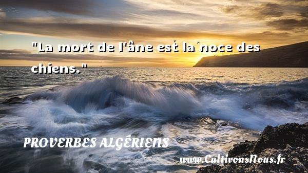 La mort de l âne est la noce des chiens. Un Proverbe Algérien PROVERBES ALGÉRIENS - Proverbes Algériens - Proverbes philosophiques