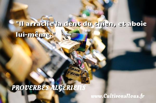 Il arrache la dent du chien, et aboie lui-même. Un Proverbe Algérien PROVERBES ALGÉRIENS - Proverbes Algériens - Proverbes philosophiques