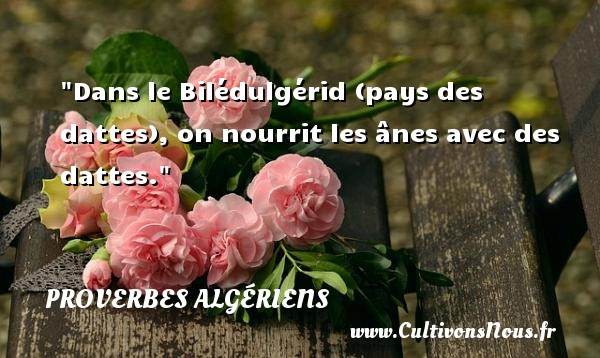 Dans le Bilédulgérid (pays des dattes), on nourrit les ânes avec des dattes. Un Proverbe Algérien PROVERBES ALGÉRIENS - Proverbes Algériens - Proverbes fun