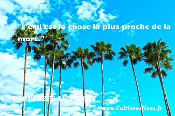 L exil est la chose la plus proche de la mort. Un Proverbe Algérien PROVERBES ALGÉRIENS - Proverbes Algériens - Proverbes philosophiques
